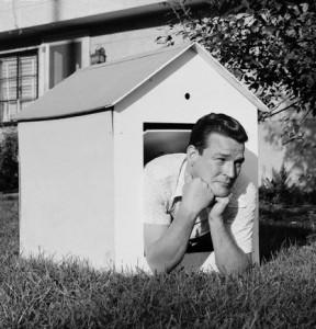 man-in-doghouse2-288x300.jpg